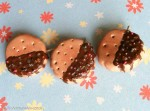 Kawaii cute Chocolate-Dipped Cookies with Sprinkles Charms